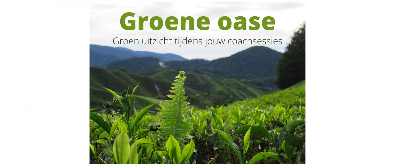 groene oase tuin natuur buiten zijn gezondheid welzijn weldaad coaching leefstijl leefstijlcoaching sessies dordrecht jijbentinzicht jij bent in zicht dordrecht