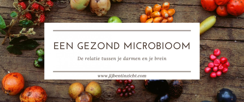 microbioom darmflora gezonde darmen brein-darm-as hersen-darm-as gezondheid voeding fermenteren kombucha kefir stemming depressie vermoeidheid